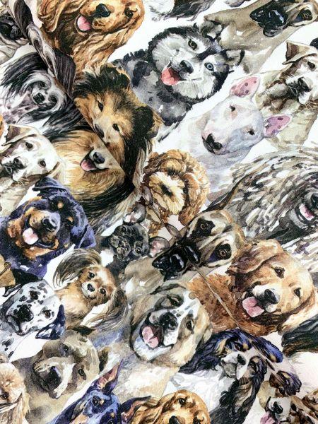 Baumwolljersey Dogs Of Seevetal DIGITALDRUCK