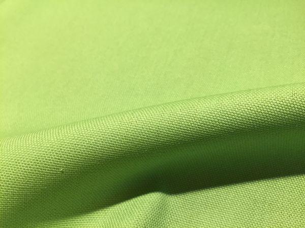 Baumwolle Canvas Hellgrün